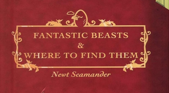 J-K-Rowling-s-Fantastic-Beasts-and-Where-to-Find-Them-Will-Get-a-Video-Game-Version